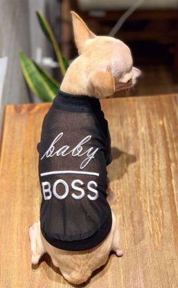 Ảnh của Áo baby Boss