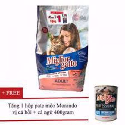 Ảnh của Miglior 2kg